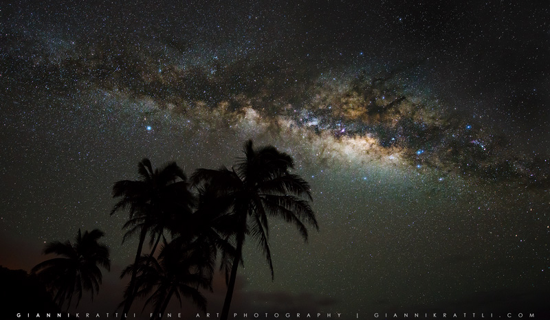 Palms of the Universe